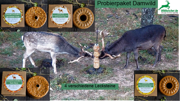 Trail Package Fallow Deer Nr 1  (4 different licks)